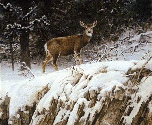 Robert Bateman-mule deer in snow