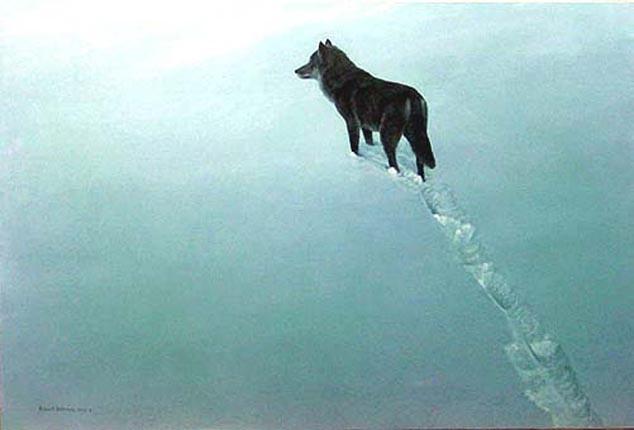 Robert Bateman-new territory blackwolf