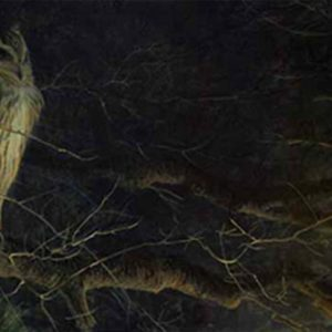 Robert Bateman-night fall eagle owl