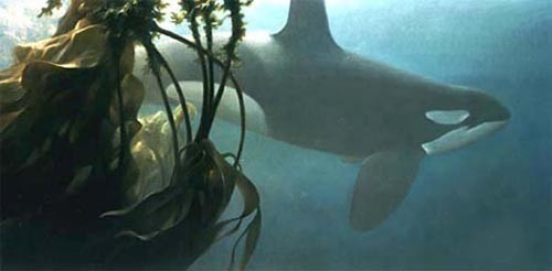 Robert Bateman-ocean rhapsody