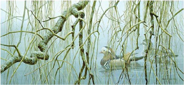 Robert Bateman-old willow mandarin pair