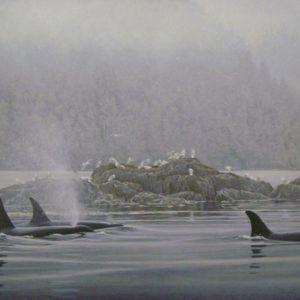 Robert Bateman-orca procession