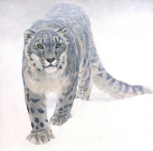 Robert Bateman-out of the white snow leopard