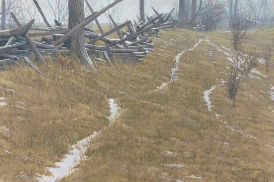 Robert Bateman-pasture trails redfox