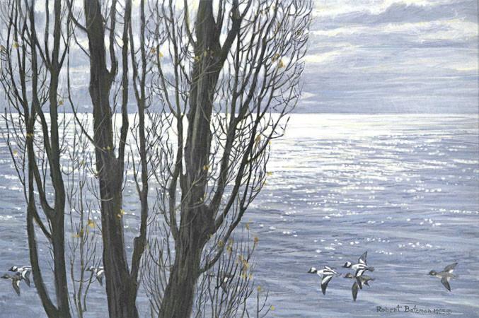 Robert Bateman-poplar trees and buffleheads