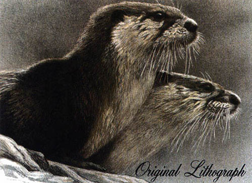 Robert Bateman-river otters