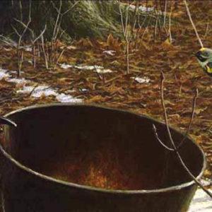Robert Bateman-sap bucket myrtle warbler