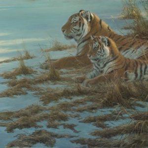 Robert Bateman-siberian clearing mother and cub