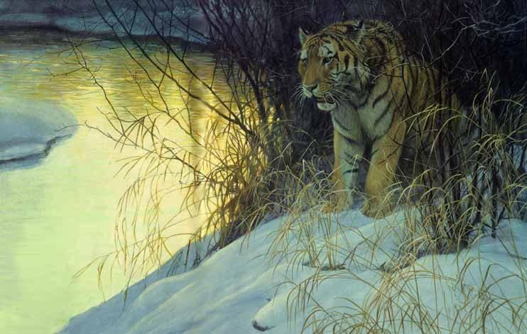 Robert Bateman-siberian tiger