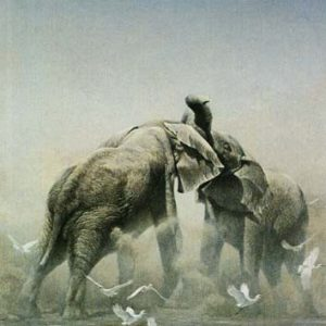 Robert Bateman-sparring elephants