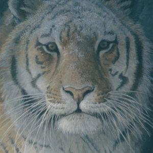 Robert Bateman-tiger at dusk