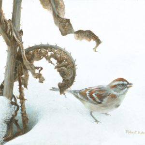 Robert Bateman-tree sparrow and teasal