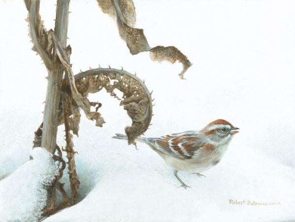 Robert Bateman-tree sparrow and teasal