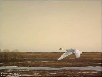Robert Bateman-whistling swan lake erie