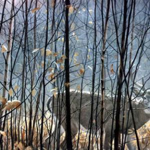 Robert Bateman-whitetailed deer thru the birches