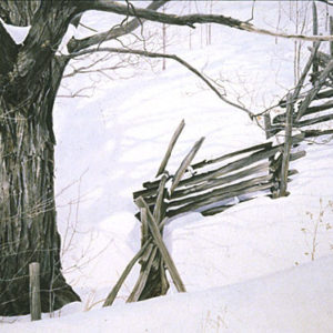 Robert Bateman-window into ontario