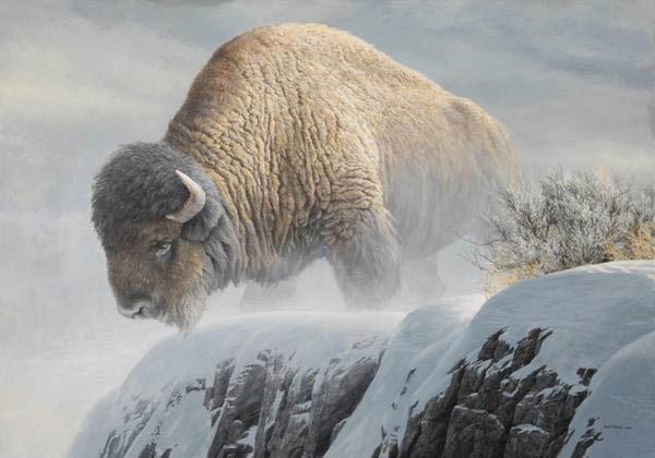 Robert Bateman-winter bison