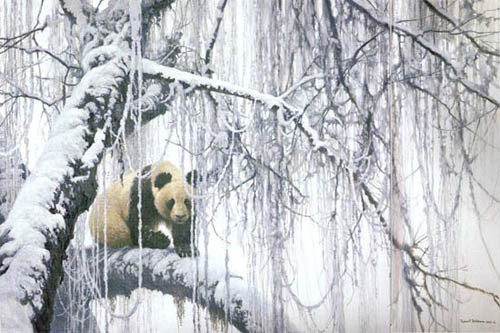 Robert Bateman-winter filigree giant panda