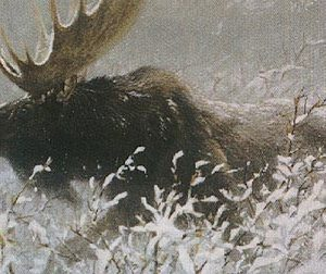 Robert Bateman-winter run bull moose
