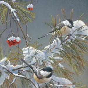 Robert Bateman-wintersong chickadees