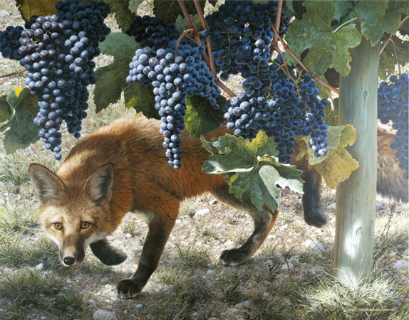 carl brenders-between the vines red fox