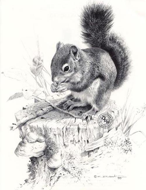 carl brenders-squirrels dish pencil