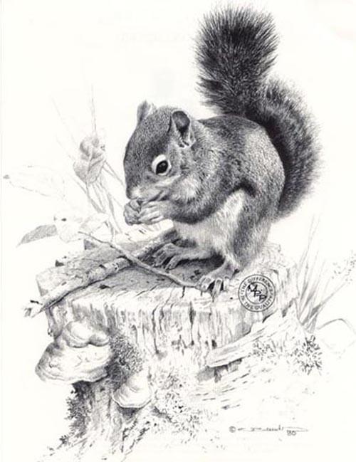 carl brenders-squirrels dish pencil