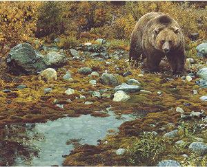 carl brenders-trail blazer grizzly bear