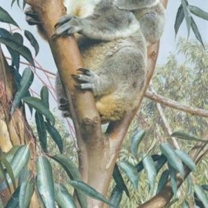 carl brenders-up a gum with mum
