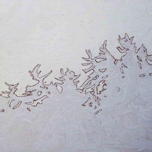 david grieve-white pine 5