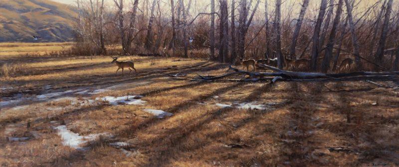 john banovich-winter shadows