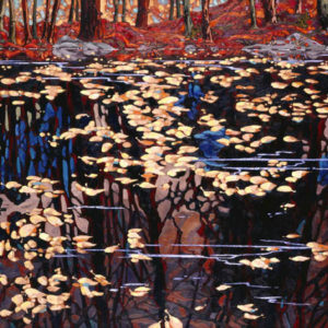 Dominik modlinski-autumn reflections