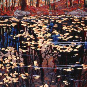 Dominik modlinski-autumn reflections