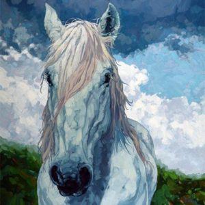Dominik modlinski-free spirit