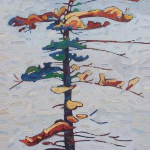 David Grieve-Wolf Lake Pine