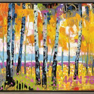 Brian Lorimer - 44N78W - Birches