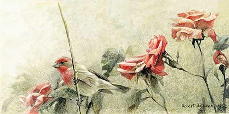 Robert Bateman - House Finch and Roses